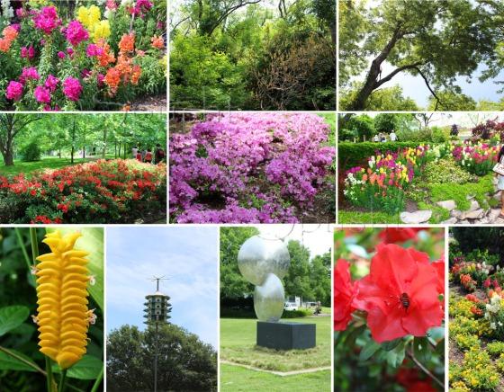 plante perene
